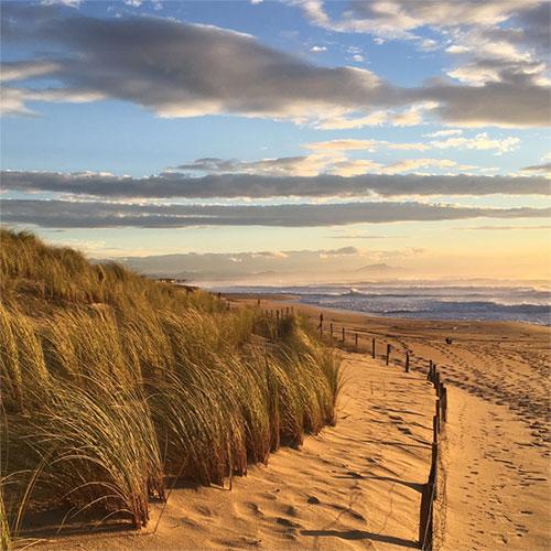 La dune, barrière contre l'océan